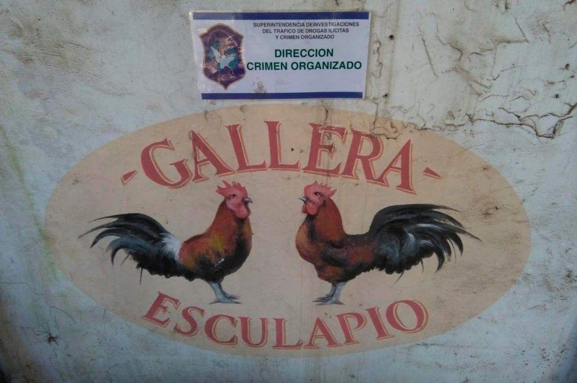 Florencio Varela: allanaron predio donde se filmó Un gallo para Esculapio