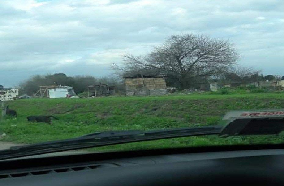 Las precarias viviendas se ubican junto al arroyo La Frontera
