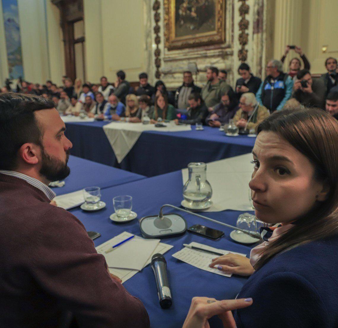 El miércoles se desarrolló una audiencia en Diputados sobre la emergencia.
