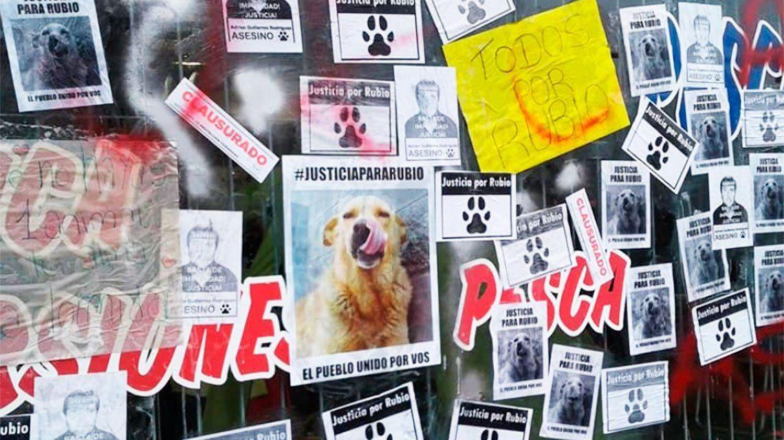 Caso Rubio: mató a un perro y el Concejo Deliberante del Partido de la Costa lo declaró persona no grata