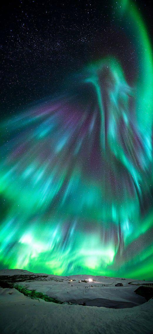 Aurora Like Phoenix   Wang Zheng