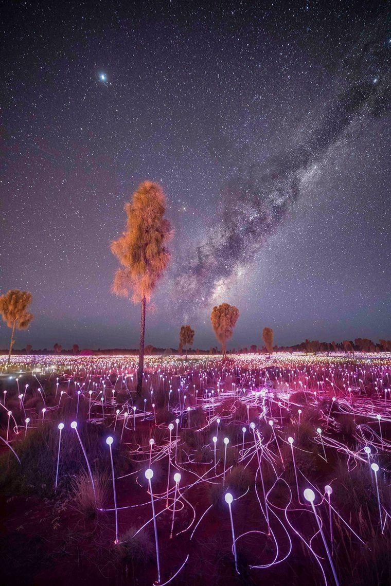 Desert Light   Jay Evans