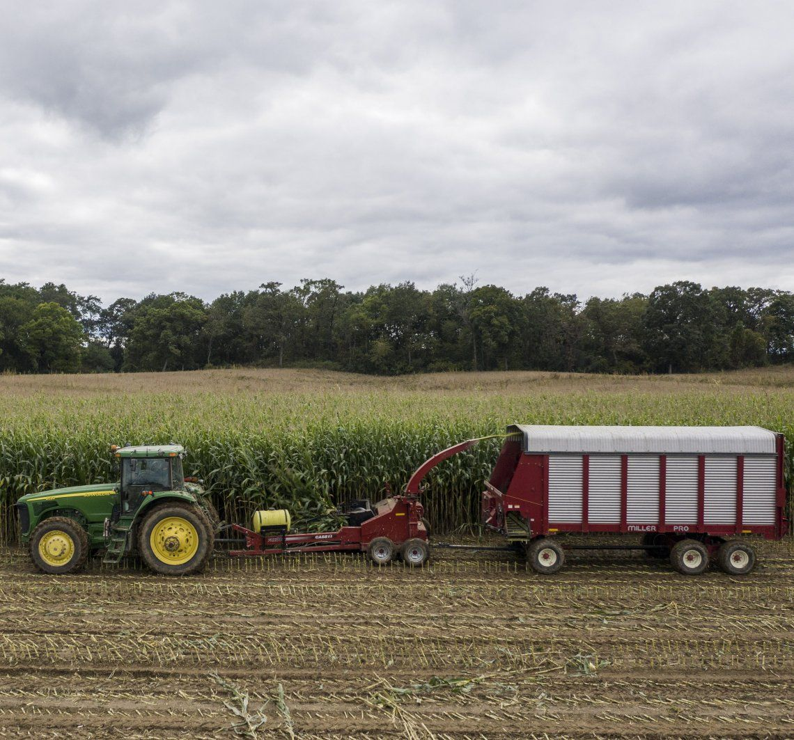 La producción agrícola y ganadera se expandirá