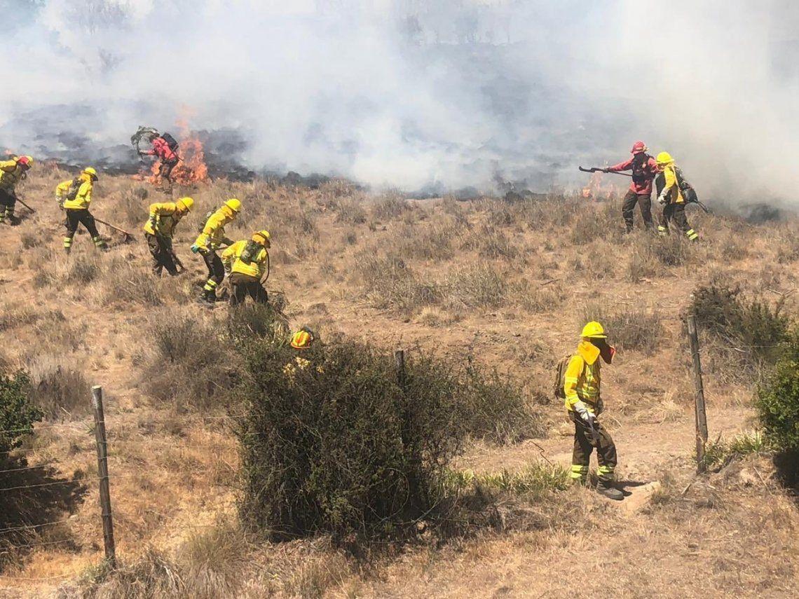 Chile | Incendios en la región de Valparaíso obligan a realizar desalojos