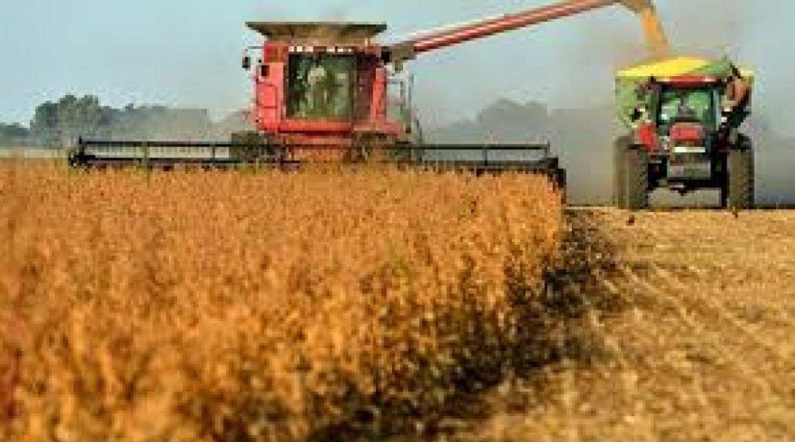 El precio del trigo