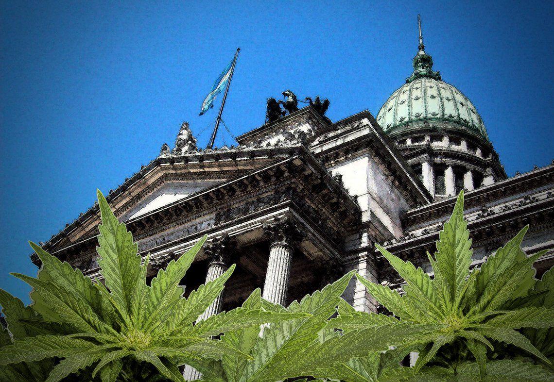 Debate sobre cannabis para todos sus usos en Cámara de Diputados: Causas por cultivo de marihuana y derechos de los cultivadores