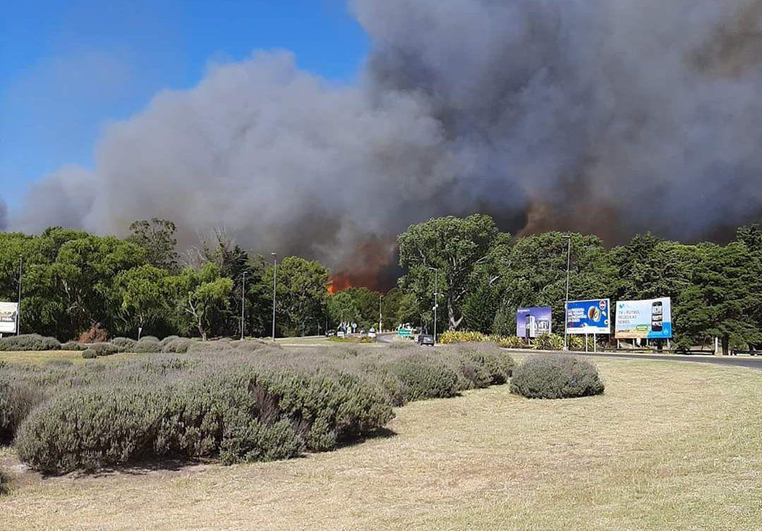 Villa Gesell: voraz incendio arrasó con más de 50 hectáreas de pastizales y bosque