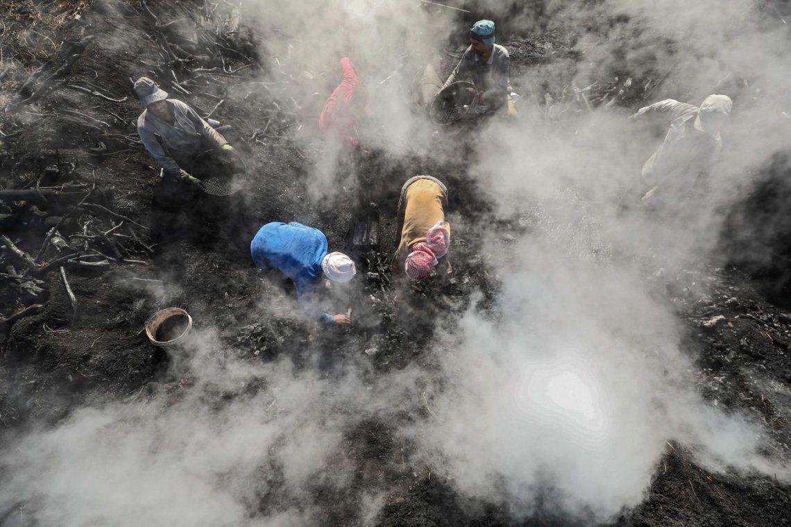 Trabajadores egipcios trabajan en una fábrica de carbón en la gobernación de Sharkia