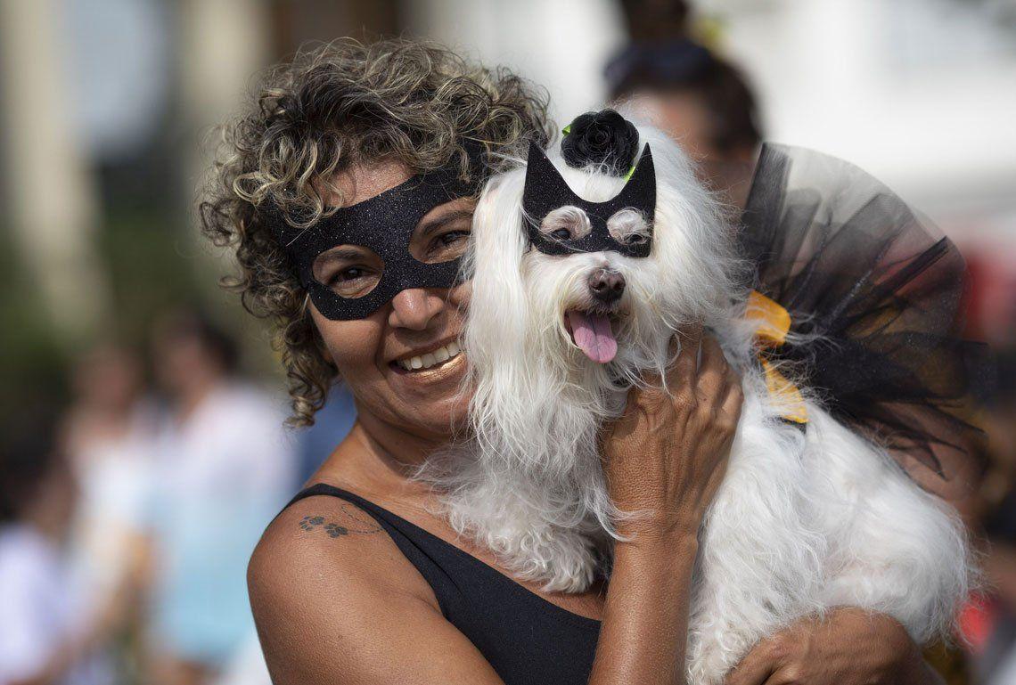 Rio de Janeiro: las mejores imágenes de Blocao, el carnaval canino
