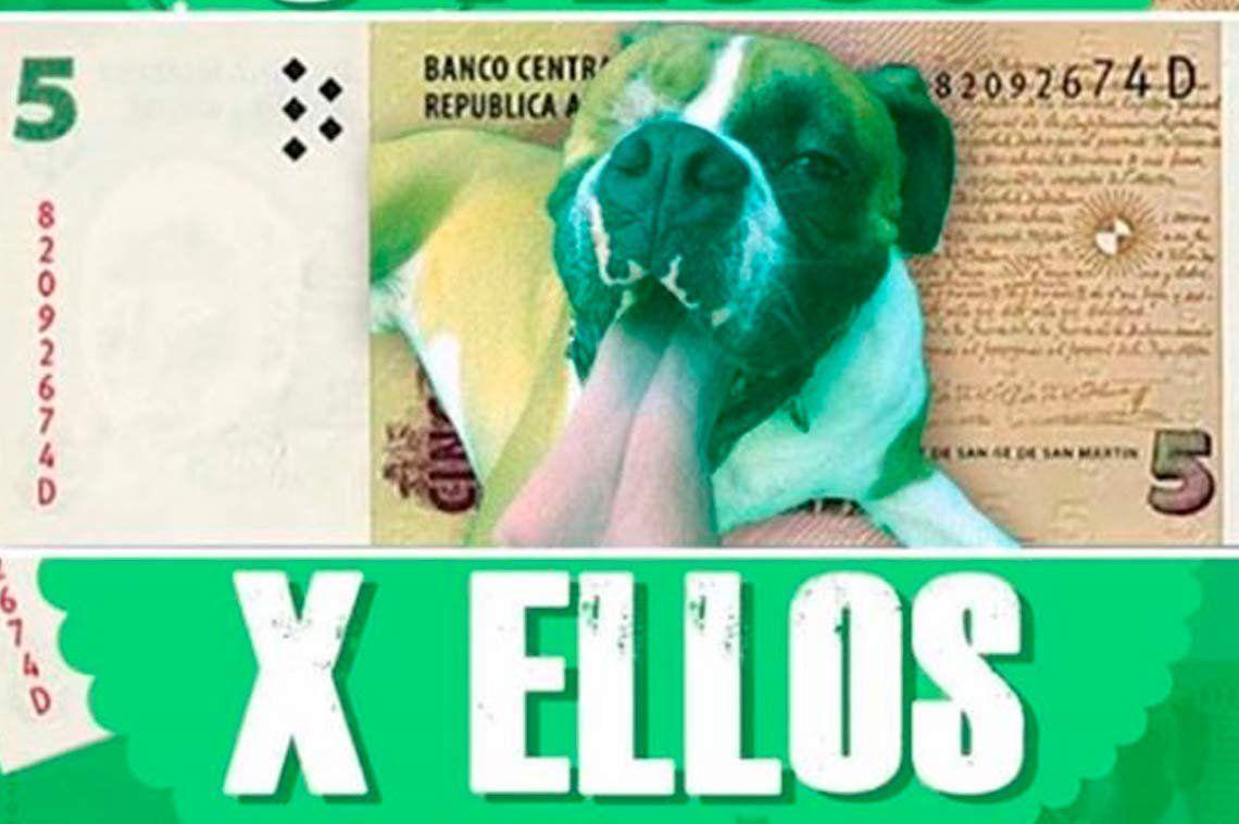 Se lanzó la campaña para donar billetes de 5 pesos a refugios para perros