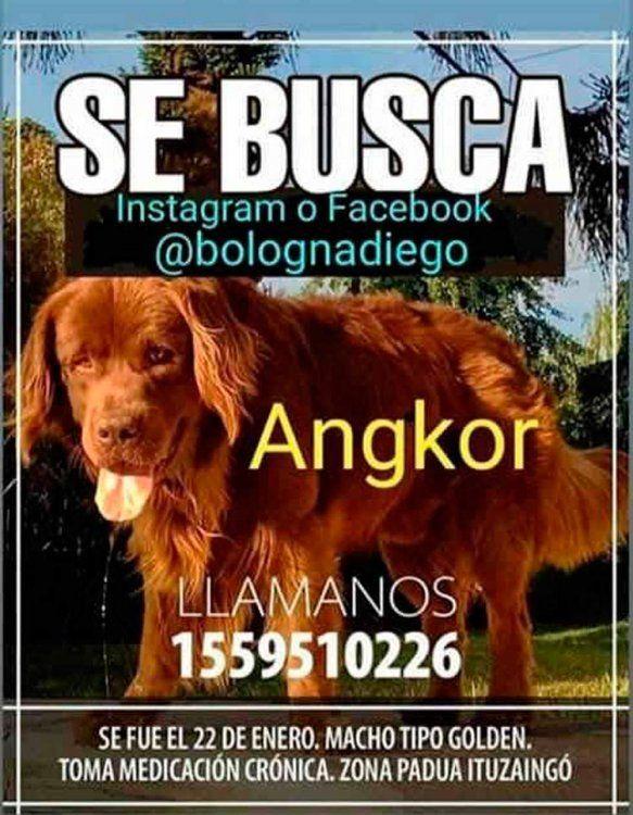Buscan a Angkor en zona Oeste