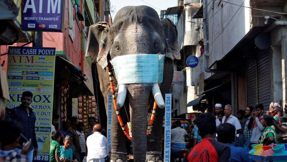 India decreta la mayor cuarentena de la historia: 1.300 millones de habitantes