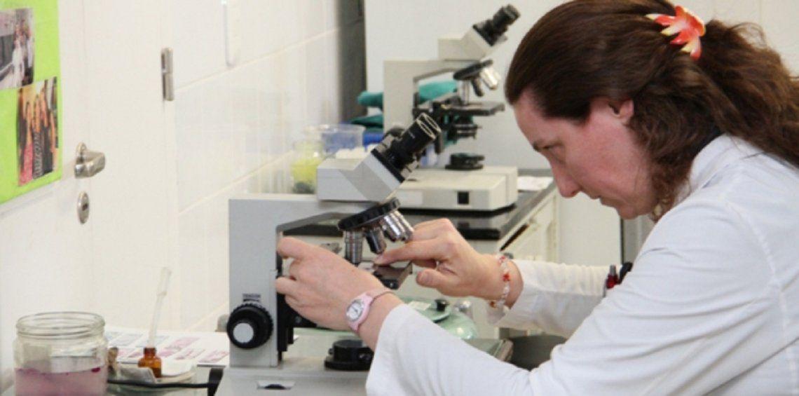 Coronavirus en Argentina: implementan sistema para saber disponibilidad de camas y respiradores