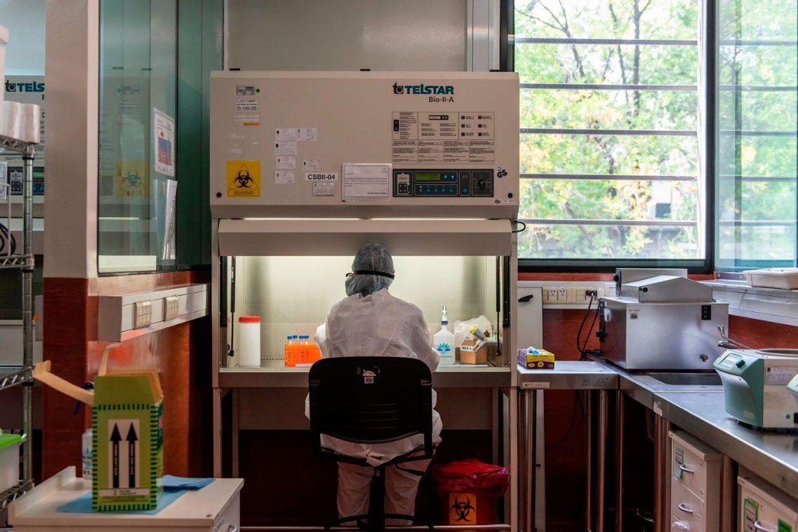 En fotos: así se analizan las muestras en el Instituto Malbrán