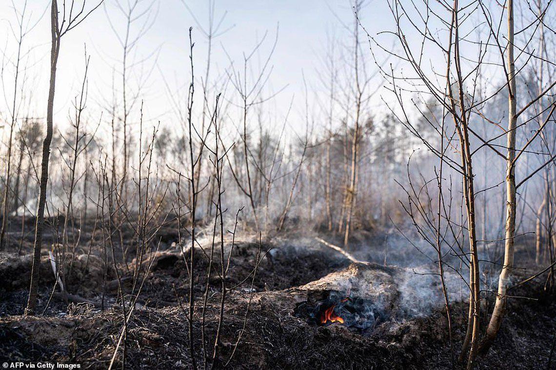 En fotos: dramática situación en Chernobyl por los incendios forestales que se acercan a residuos radiactivos