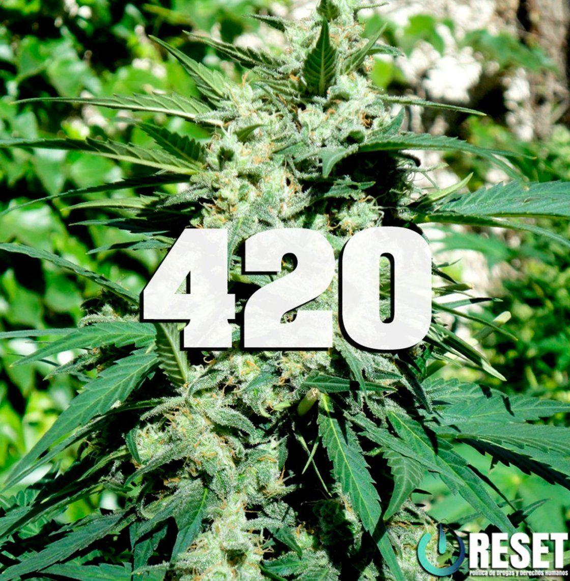 Día internacional de la marihuana: ¿Cuál es la verdadera historia del código 420?