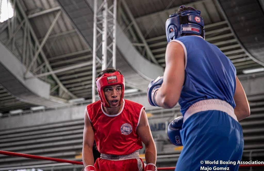 Boxeo | Ecos del cautiverio