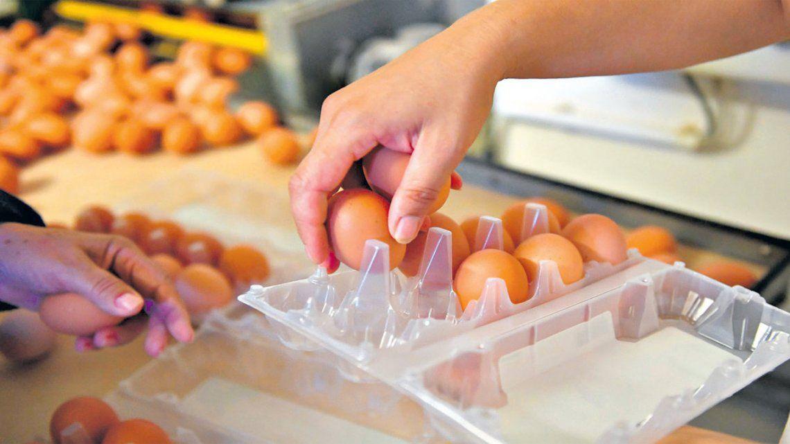 Afirman que es desmedido lo que cuestan los huevos