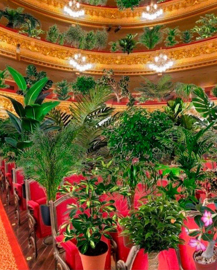 El Gran Teatro del Liceo de Barcelona reabre sus puertas con un concierto para 2.000 plantas