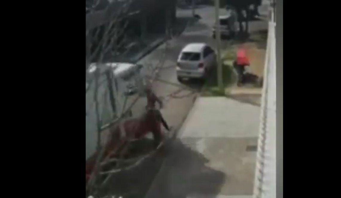 Tres de Febrero: un sodero atropelló a motochorros cuando robaban a una mujer