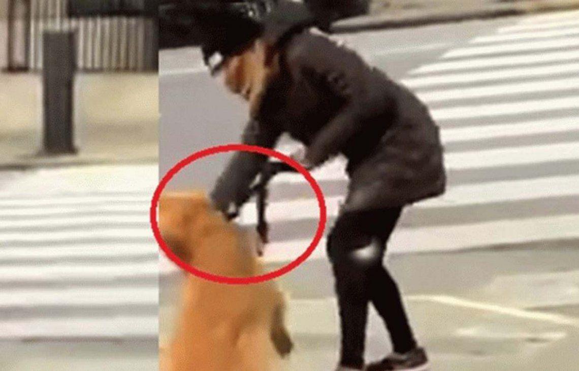 Maltrato animal: escrachan a la mujer que le dio una golpiza a su perro en plena calle