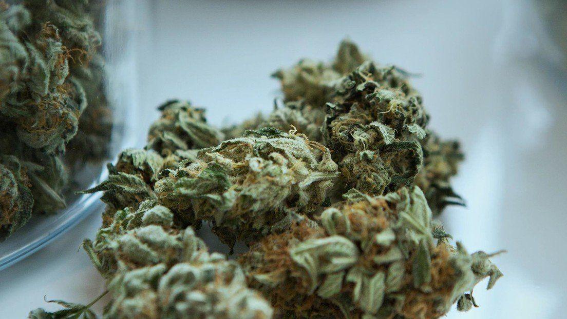 Culto marihuanero: el cannabis se usaba hace 2.700 años en ceremonias religiosas