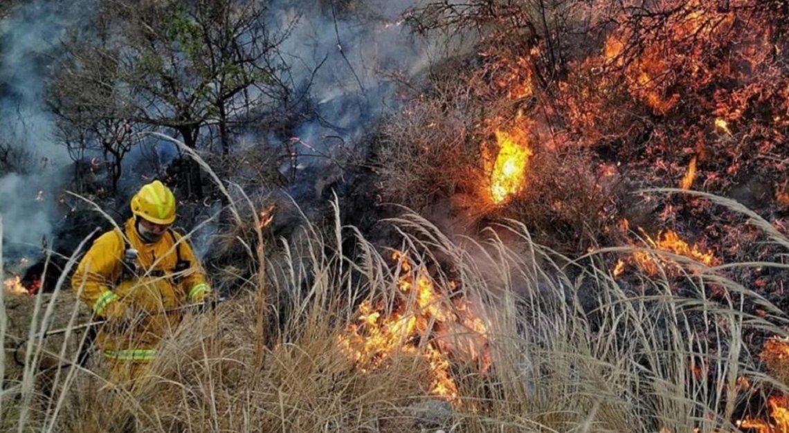 Incendios forestales en Córdoba: Ongamira y Villa Albertina, en jaque por las llamas