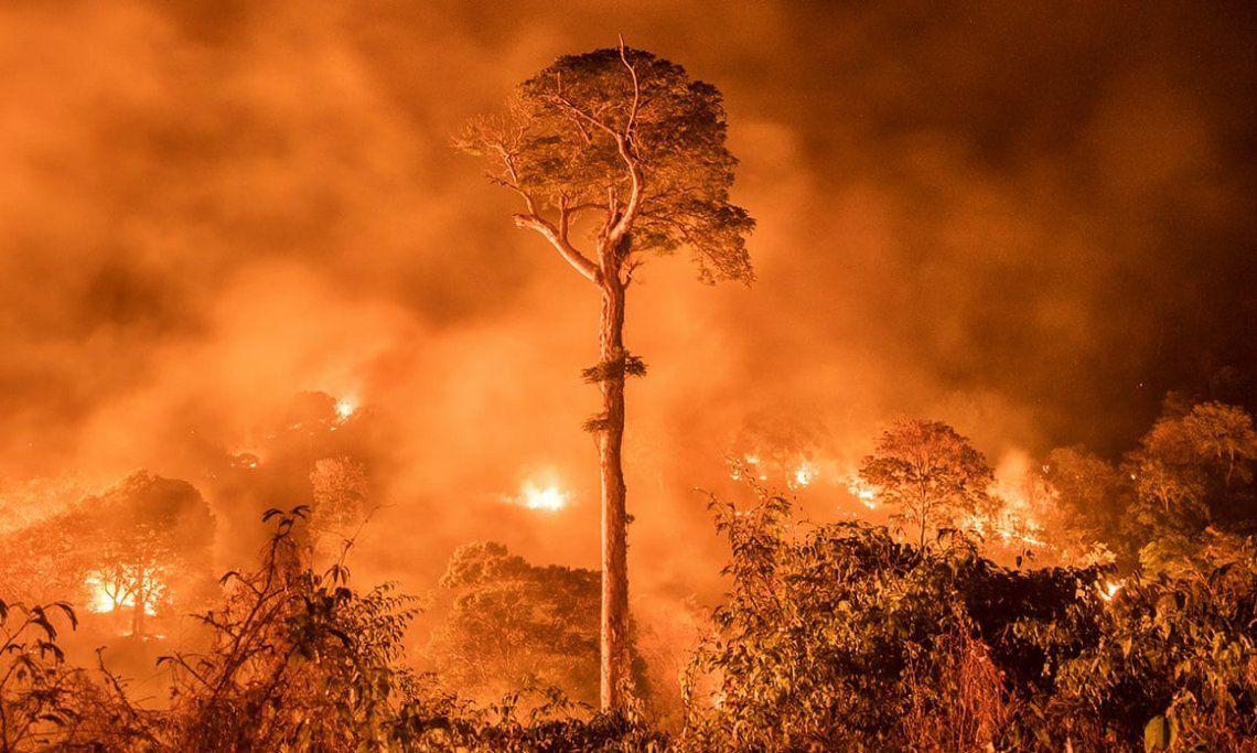 Amazonas ardiendo por Charlie Hamilton James