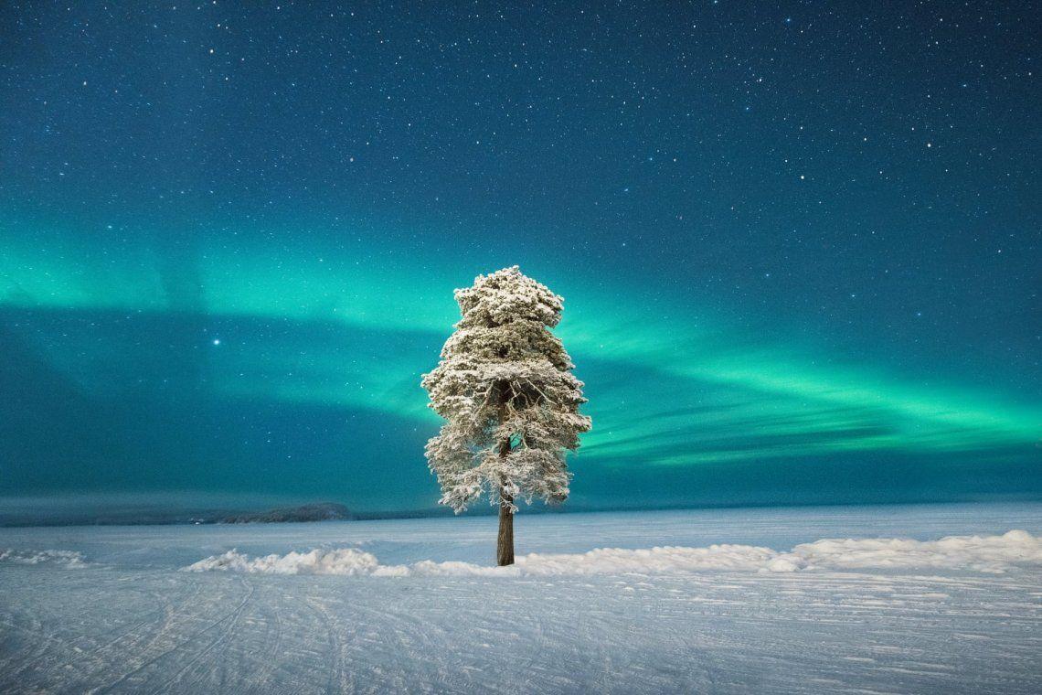 Segundo categoría auroras: Lone Tree under a Scandinavian Aurora de Tom Archer (Reino Unido)