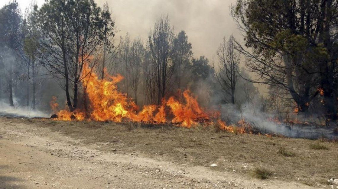 Córdoba: se mantienen activos los incendios forestales y piden políticas de prevención