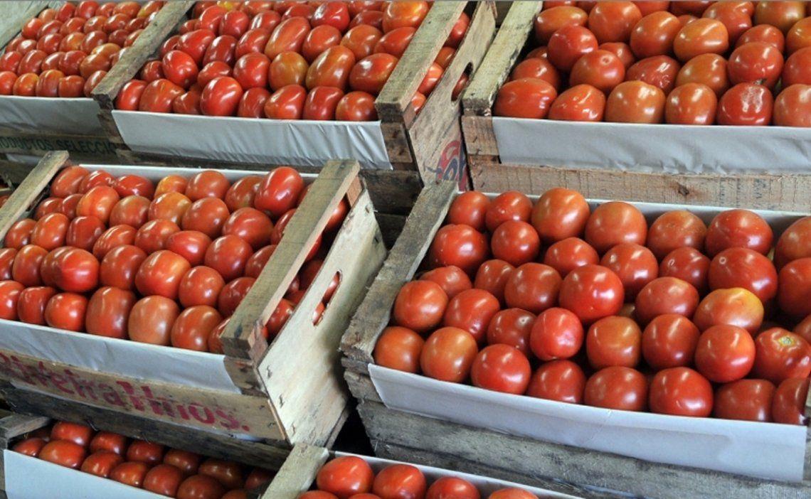 La inversión de septiembre fue el tomate: subió 51,4%