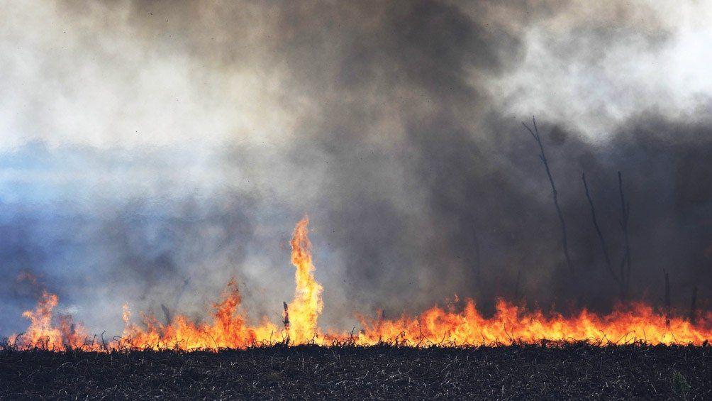 Delta del Paraná: kayakistas autoconvocados combaten los incendios