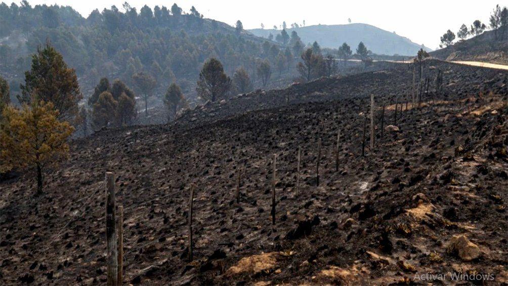 Gracias a las lluvias, se extinguieron todos los incendios que quedaban activos en Córdoba