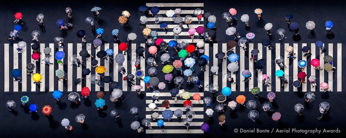 Primer lugar en la categoría de patrones: Umbrella Crossing