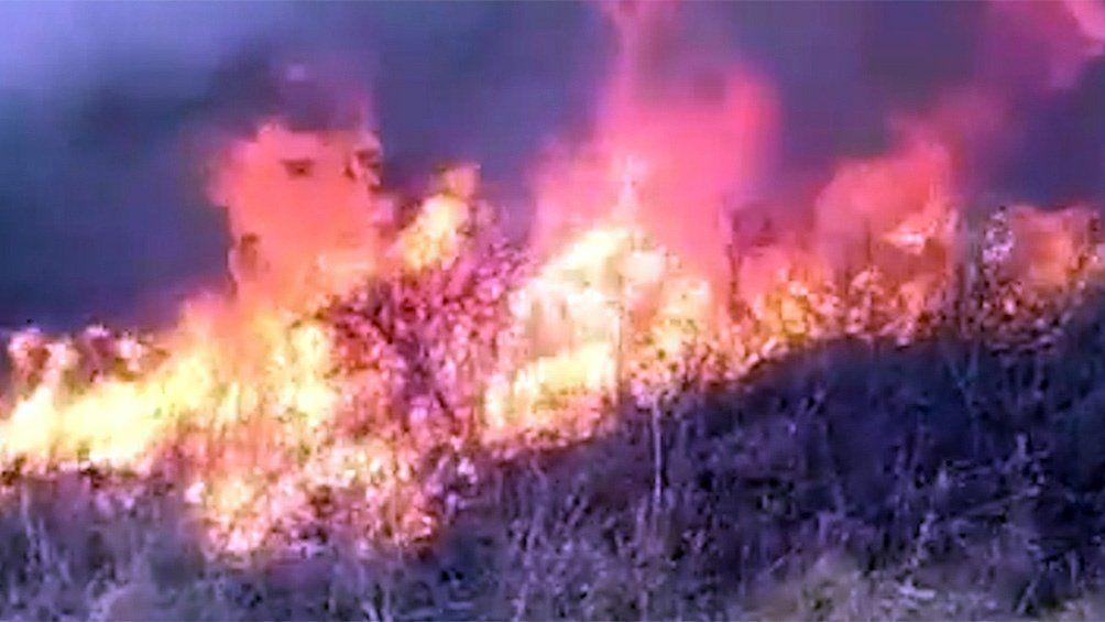 Incendios forestales: combaten focos activos en San Luis y Jujuy