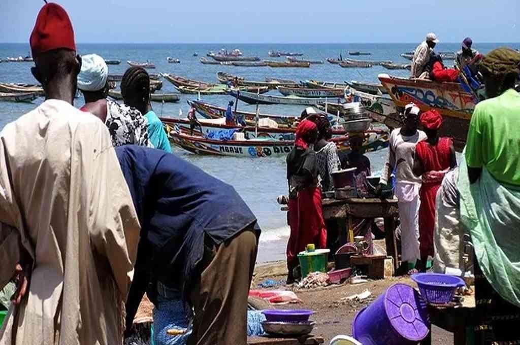 Pescadores de Senegal se contagiaron una enfermedad desconocida.