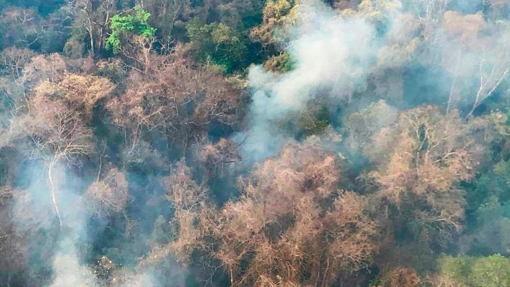 Jujuy: incendios forestales.