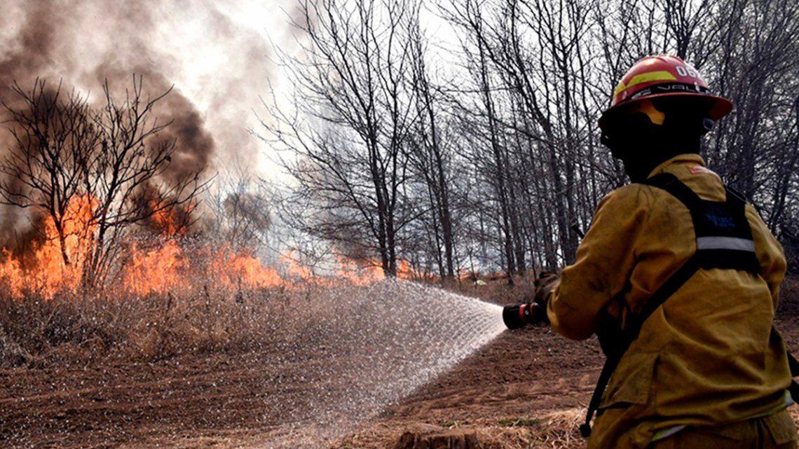 Se estima que las superficies afectadas por los incendios forestales suman unas 1.080.846 hectáreas