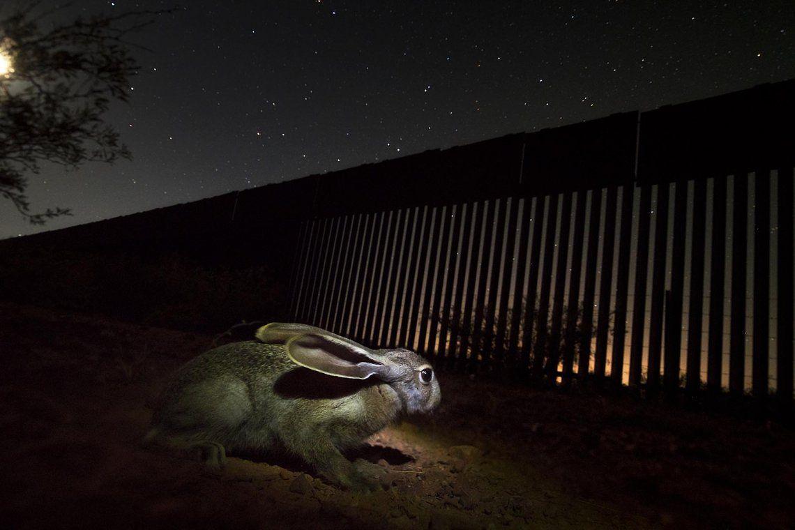 Ganador categoría portfolio Fred Hazelhoff: Alejandro Prieto | Border wall project