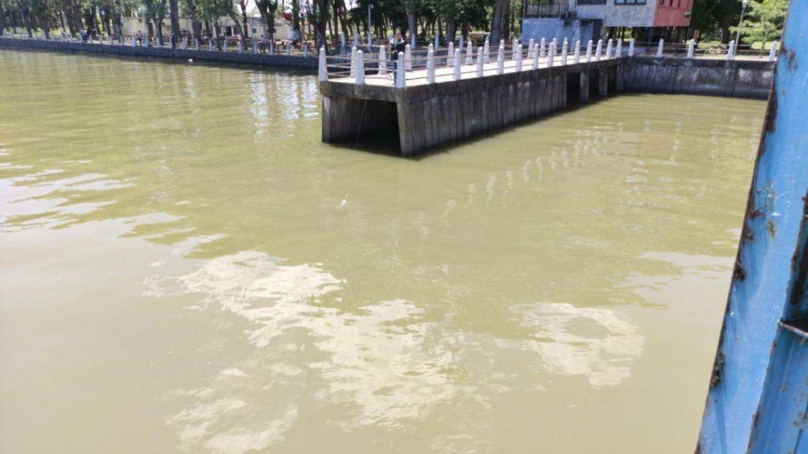 La Plata: Tomarán medidas para evitar el ingreso de algas a las tomas de agua