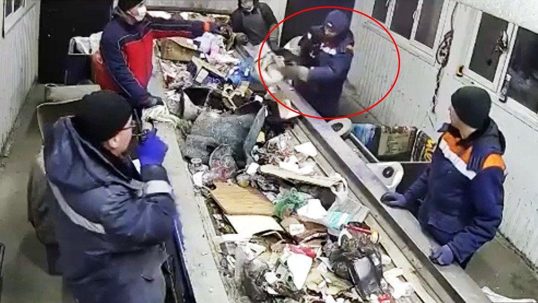 Gato tirado a la basura en Rusia.