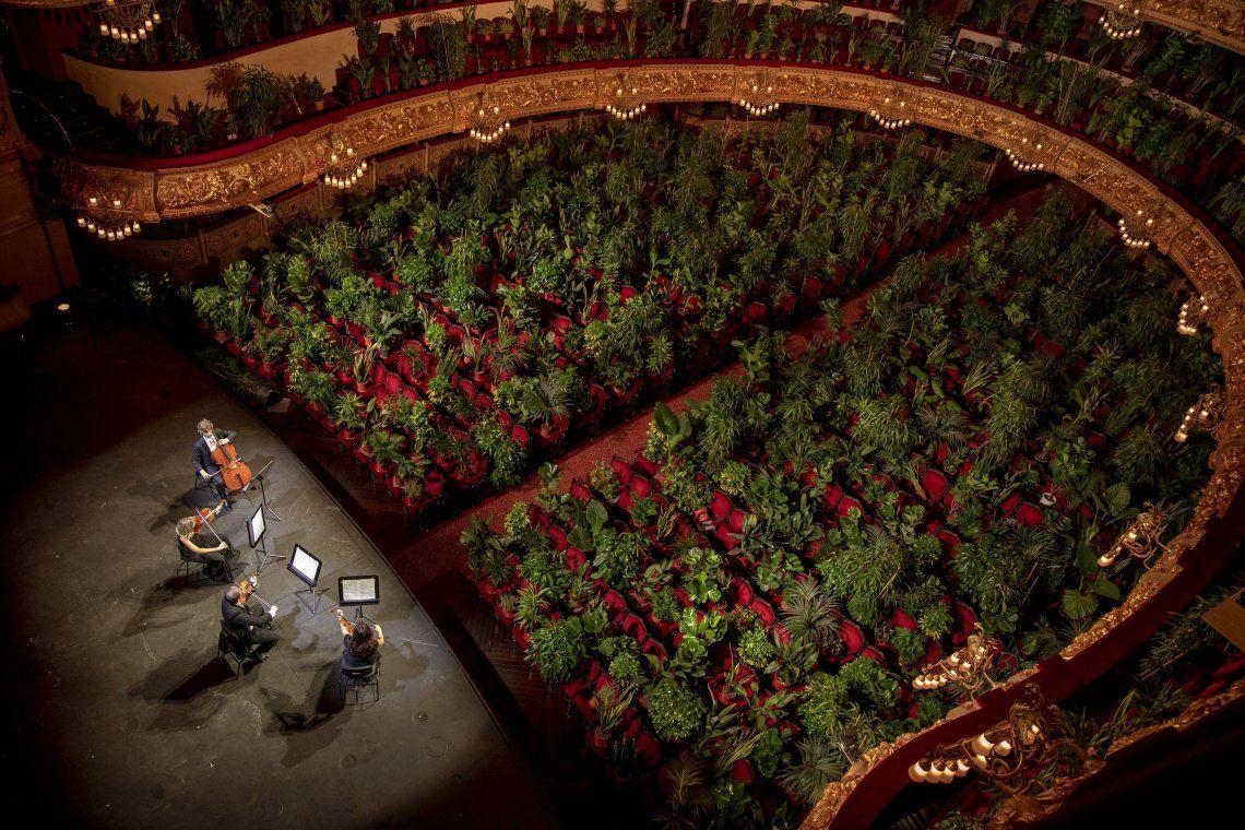 Concierto para plantas en el Gran Teatre del Liceu de Barcelona