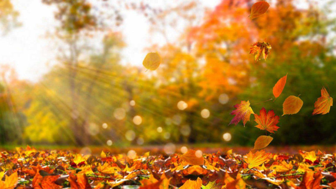 Se espera un otoño bastante cálido y sin lluvias