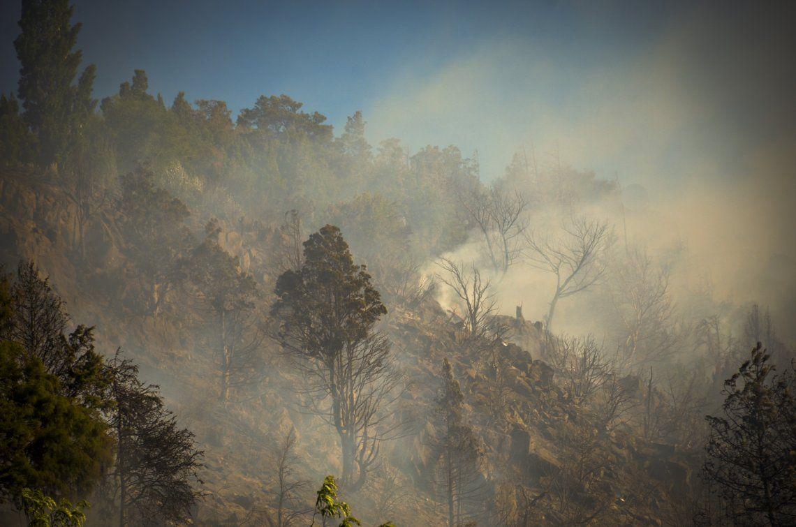 Los incendios forestales afectan a más de 25.000 hectáreas en El Bolsón.
