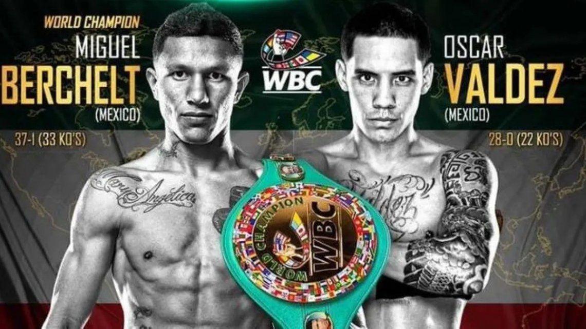 Boxeo: Berchelt y Valdez van por el título súperpluma del CMB