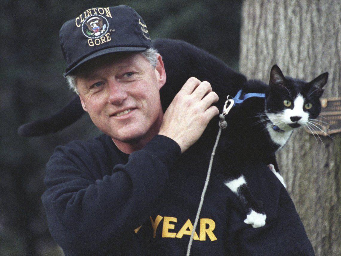 Dia Internacional del Gato en homenaje a la mascota de Bill Clinton
