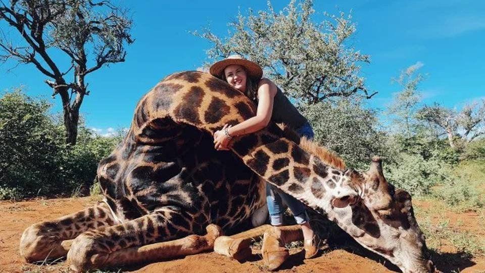 Cuando una jirafa muerta se conviete en un trofeo a la crueldad humana