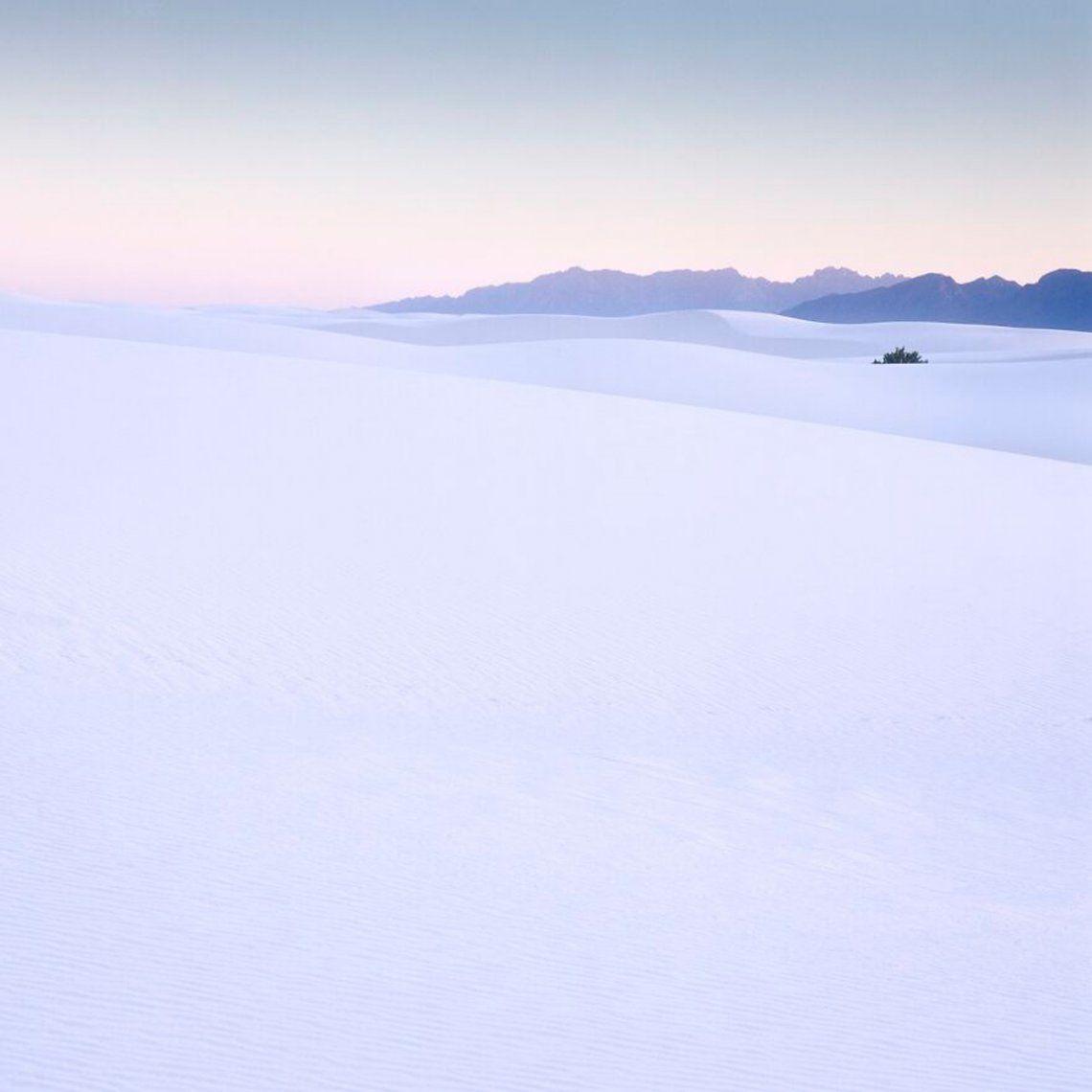 White Sands (2do lugar / Analógico / Cine / Paisaje)