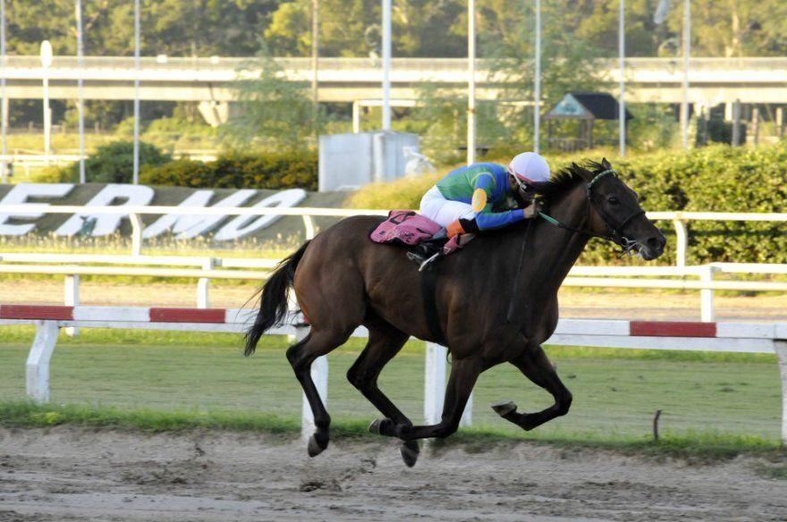 Tetaze volvió al triunfo en el Hipódromo Argentino