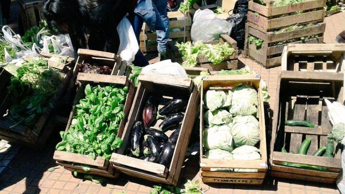 Cientos de productores marcharon al centro de La Plata para pedir seguridad y donar verduras.